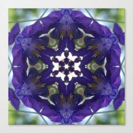 Blue columbine mandala 2 Canvas Print