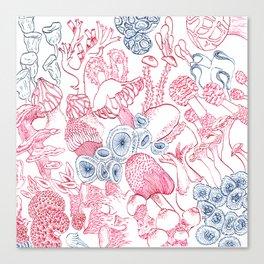 Mycology 3 Canvas Print