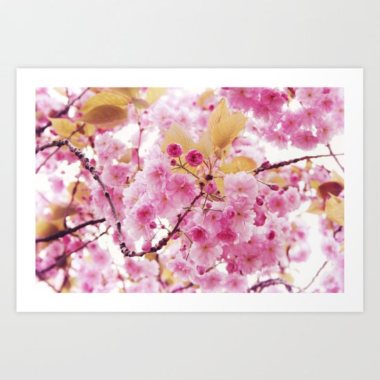 Bloom, bloom, bloom! Art Print