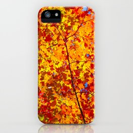 Blazing Fall Canopy iPhone Case