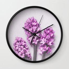 Pink Hyacinths Wall Clock