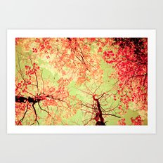 Color Drama II Art Print