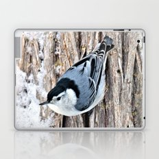 White-breasted Nuthatch Laptop & iPad Skin