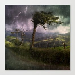 Tree Blowing in the Wind During a Thunder Storm Canvas Print