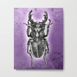 Purple stag beetle Metal Print