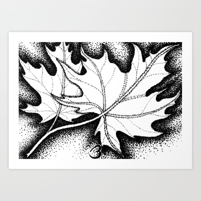 Pointed Leaves Art Print