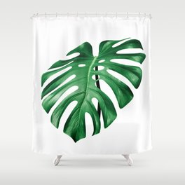 Split leaf philodendron leaf isolated on white Shower Curtain