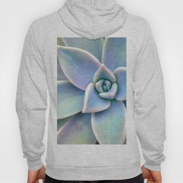 Pastel Succulent Hoody