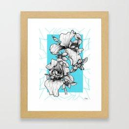 Iris&Bourrache Framed Art Print