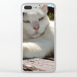 Black and White Bicolor Cat Lounging on A Park Bench Clear iPhone Case