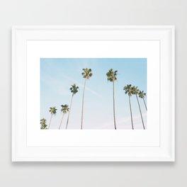 Beach Palms Framed Art Print