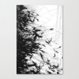 Dark Rain Canvas Print