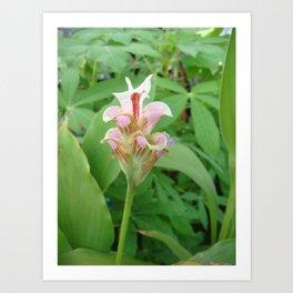 Like a lotus flower petal pink mini polka dots designed for relaxation Art Print