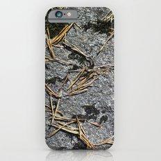 fir needle on a rock Texture iPhone 6s Slim Case
