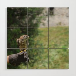 What about flying Wood Wall Art