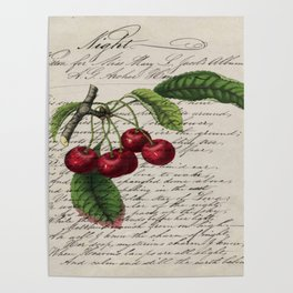 shabby elegance french country botanical illustration vintage red cherry Poster