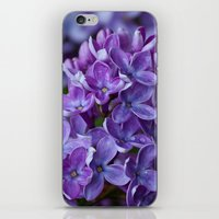 free shipping iPhone & iPod Skins featuring Lilac spring free shipping by Ordiraptus
