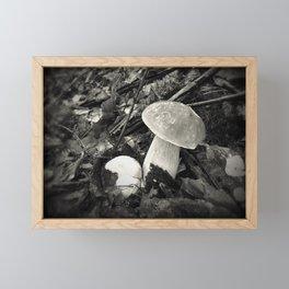 Made by rain - Mushroom series -I.- Framed Mini Art Print