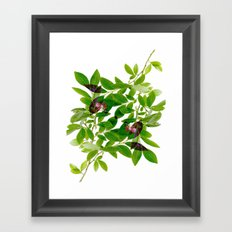 Blueberry Branch in Spring Framed Art Print