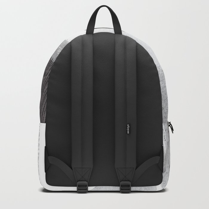 bs 5 Backpack