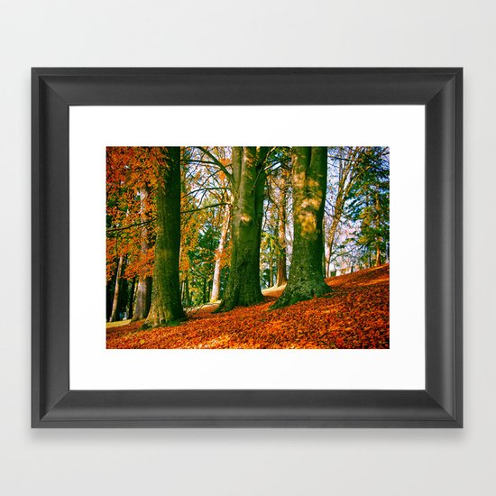 Autumn park hill Framed Art Print