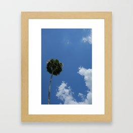 Lonely Palm Framed Art Print