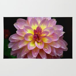 Pink and yellow dahlia beauty Rug