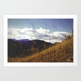 mountains through grass Art Print