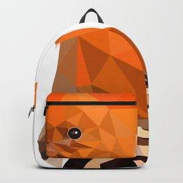 Bird artwork hoopoe geometric, Orange and brown Backpack