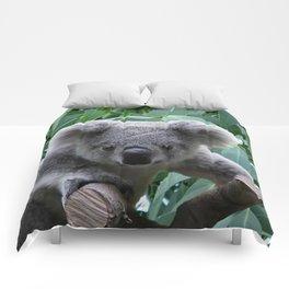 Koala and Eucalyptus Comforters