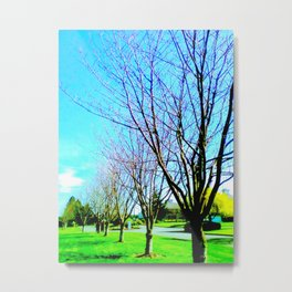 Pleasant Valley Trees Metal Print