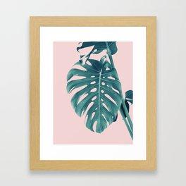 Monstera Delight #3 #tropical #decor #art #society6 Framed Art Print