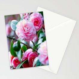 Pink Camelias Stationery Cards
