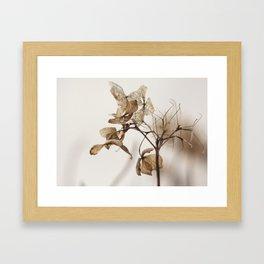 artistic nature 4 Framed Art Print