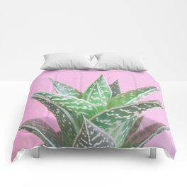 Pink Aloe Tiki Comforters