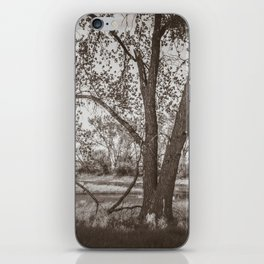 Cottonwoods at Lee's Farm, Sepia 2 iPhone Skin