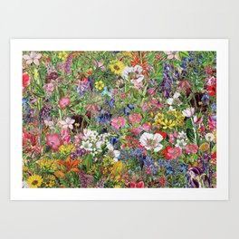 Botanical Bloom Nature Wildflower Art Print
