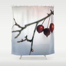 Frozen Berries Shower Curtain