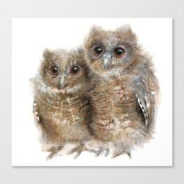 Baby Owls Canvas Print