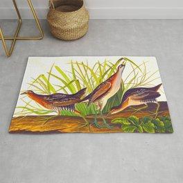 Sora, or Rail Bird Rug