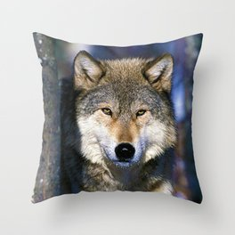 Timber Wolf - Ready to Run - Photography Throw Pillow