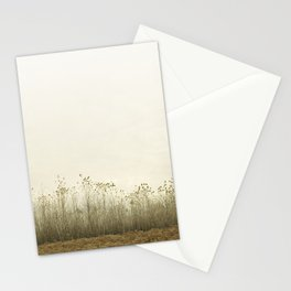 Pale Morning Mood Stationery Cards