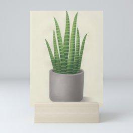 Sansevieria trifasciata Mini Art Print