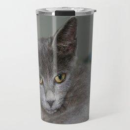 Beautiful Portrait of A Grey Russian Cross Tabby Cat  Travel Mug