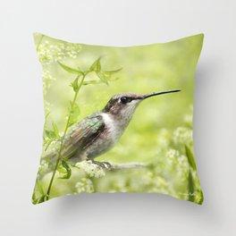Hummingbird XIV Throw Pillow