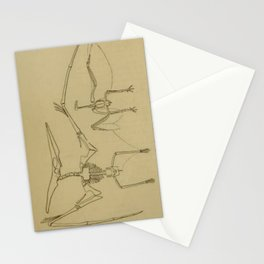 Pterodactyl Anatomy Stationery Cards