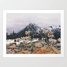 Mountains + Flowers Art Print