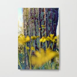 McDowell Sonoran Preserve - Scottsdale, Arizona Metal Print