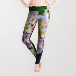Tropical Plant Lantana Camara or West Indian Lantana Leggings