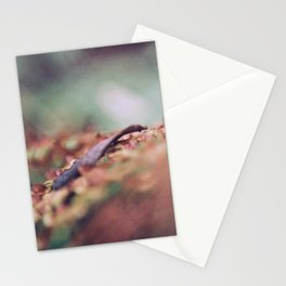 Makeshift macro. Stationery Cards